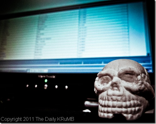 skull_and_computer