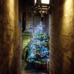 Christmas Tree in an Edinburgh Close